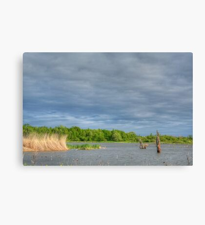 Grey Waters and Grey Sky Canvas Print
