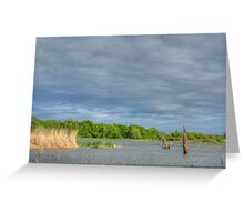 Grey Waters and Grey Sky Greeting Card