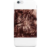 Autumn Copper 3 iPhone Case/Skin