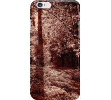 Autumn Copper 1 iPhone Case/Skin
