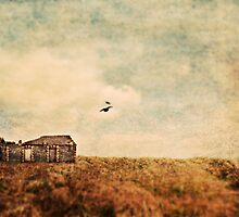 Abandoned building by Sharonroseart
