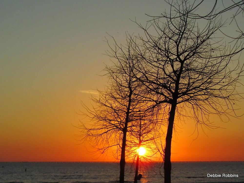 Pontchartrain Sunset by Debbie Robbins