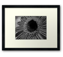 Lack of Colour Framed Print