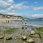 Low Tide In Lyme by lynn carter
