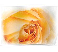 English Rose Golden Celebration Poster
