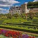France. Villandry. Château de Villandry. Vegetable Garden.  by vadim19