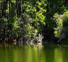 Fishing trip by Adam Wignall