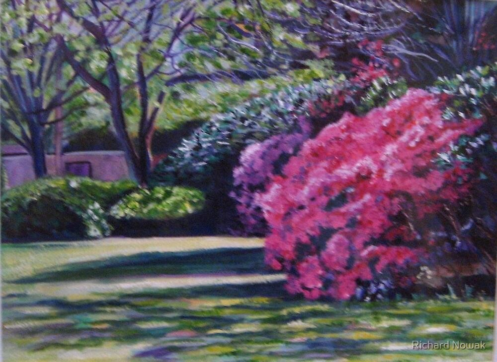 Spring Blossoms by Richard Nowak