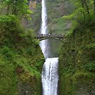 &quot;Multnomah Falls&quot; by Lynn Bawden
