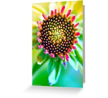 Splendiferous Greeting Card