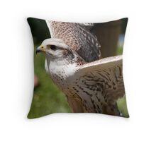 Birds of Prey Series No 12 Throw Pillow