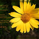 Psalm 57:9-11 by WeeZie