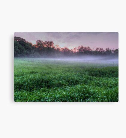 Misty Glen Just After Sunset Canvas Print