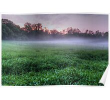 Misty Glen Just After Sunset Poster