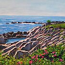 Light on Maine's Rocks by Richard Nowak