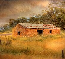 The Lost Farm - Monarto, The Murray Valley, South Australia by Mark Richards