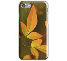 golden glow iPhone Case/Skin