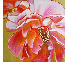 Peony Exuberance, mixed media on canvas Photographic Print