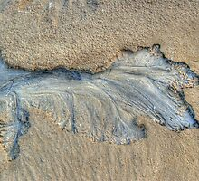 Pattern In The Sand by Eve Parry