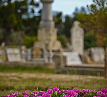 Chinese Cemetary - Beechworth, Victoria - 2 by Kat36