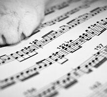 Matt Claghorn's 'The Musical Cat' by Art 4 ME