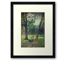 The Split Framed Print