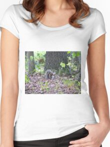 Squirrel Posing Women's Fitted Scoop T-Shirt