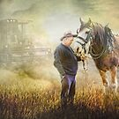 Remembering Old Friends by Trudi's Images