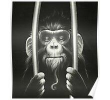 Prisoner II Poster