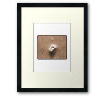Face on Mars Framed Print