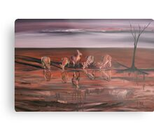 Kangaroos at the Waterhole Metal Print