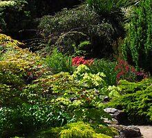 Samares Manor Gardens, Jersey by wiggyofipswich