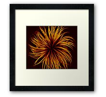 Orange Clematis Abstract Framed Print
