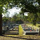 Journey's End, Kurri Kurri Cemetery, NSW by PollyBrown