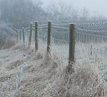 The ice covered rickety fence by Fay Freshwater