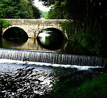Abbey Bridge - Tavistock by Marilyn Harris