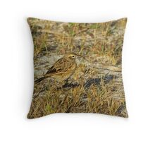 Can You Find Me? Throw Pillow