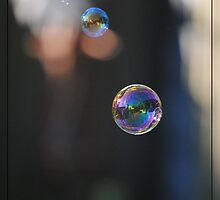 A bubble that can go any where by Caitlin  Photography