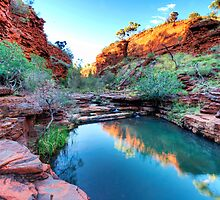 Weano Gorge in Karijini NP - WA by Alwyn Simple