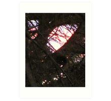 Like A Stained Glass Window Art Print