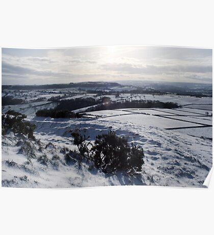 Snow Landscape from Castle Hill Poster