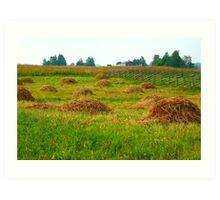 Haystacks in field Art Print