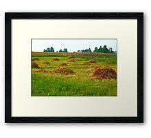 Haystacks in field Framed Print