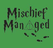 Mischief Managed,Harry Potter by lillardArt