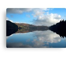The Mirror in the Lake Canvas Print