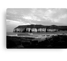 The White Cliffs of Bempton Canvas Print