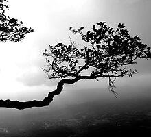 alone by dattagawade