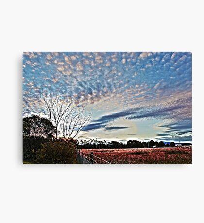 HDR Woodville Landscape #2 Canvas Print