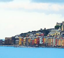 A View of Porto Venere by Roland Pozo