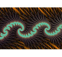 Quill Wave Photographic Print